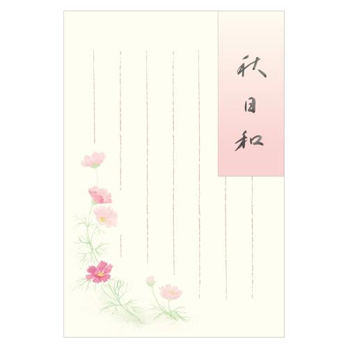 KBNポストカード 秋桜