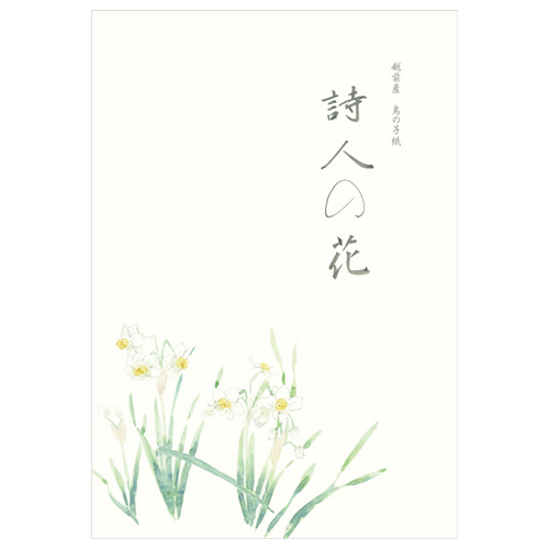 KYU B5便箋 水仙