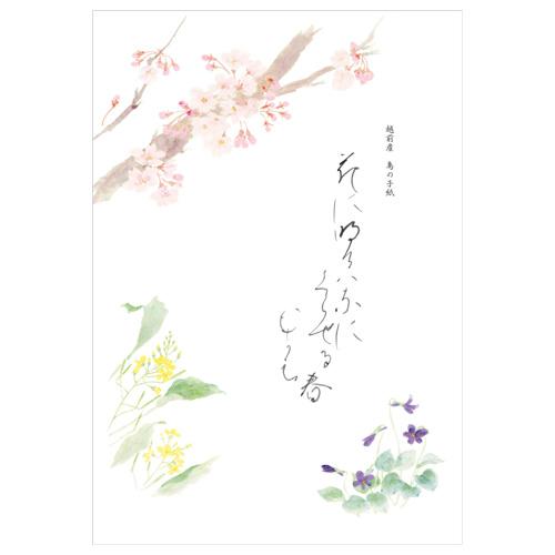 KWC B5便箋 春の花