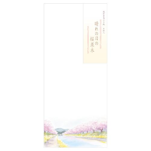 HY封筒 桜並木