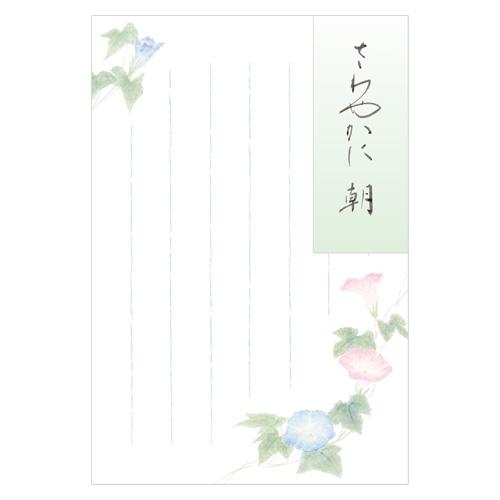 KNTポストカード 朝顔