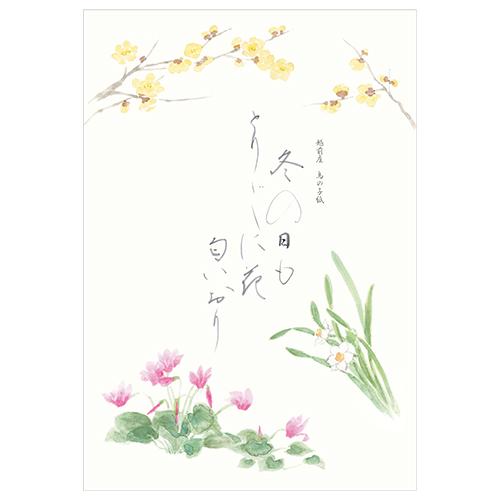 KWB B5便箋 冬の花